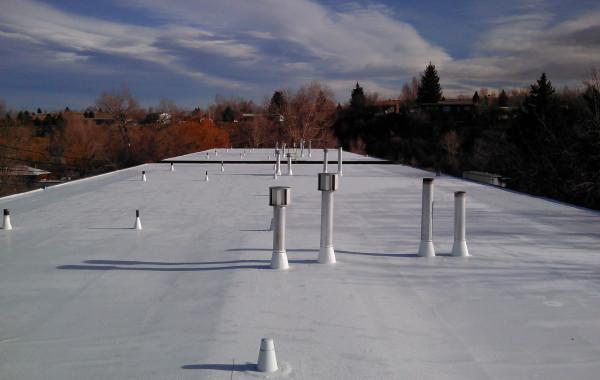 Flat Roof – Lander